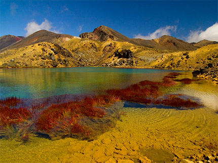 Volcanic landscapes in new zealand beatiful landscape for Landscaping courses nz