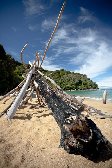 Drift Wood, Abel Tasman